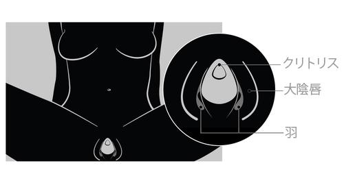 新ウーマナイザー【EVAⅡ(エヴァ2)】の装着方法の図
