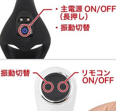 WAD Rayの操作ボタンと操作方法説明